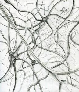 Drawing 15